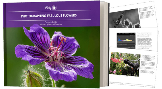 flower photo guide