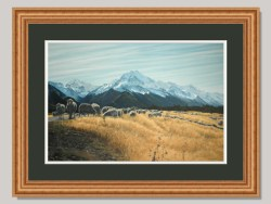 Aoraki Mt Cook In Our Own Good Time Ltd Edition Framed Print by Grant McSherry