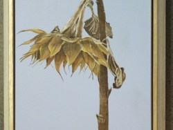 Original Painting The Demise of A Sunflower by Joy Boston