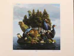 Buller Matted Print by Barry Ross Smith