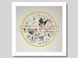 Goldfinch Mandala Framed Print By Karyn Roberts