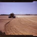 Cultivating a field, Seabrook Farm, Bridgeton, N.J. (LOC)