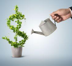 Топ-7 інвестиційних проектів для вкладення грошей