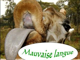 Mauvaise langue   PPS Humour
