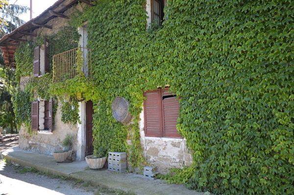 Farmhouse for restoration in Piedmont Italy Prunetto 6404