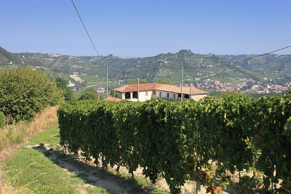 Italian farmhouse for sale in the UNESCO area of Piemonte