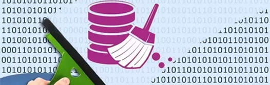 Outsource-data cleansing services