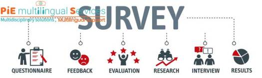 Multilingual Market Survey Outsourcing 2 India