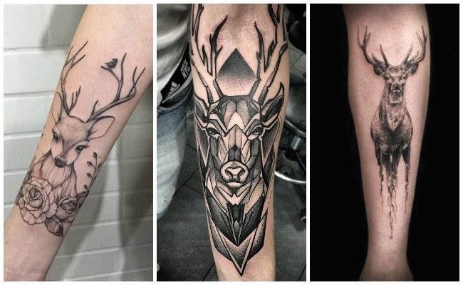Tatuajes De Ciervos Related Keywords Suggestions Tatuajes De