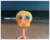 """Meredith Allen - """"Rogers Beach, Tweety"""""""