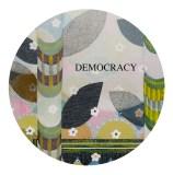 Glenn Goldberg - Democracy