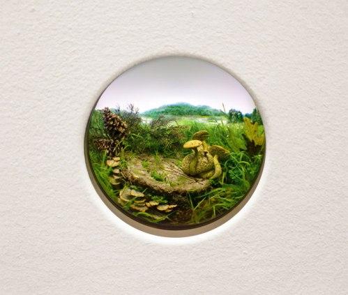 "Patrick Jacobs - ""Parasitic Bolete with Brackets and Pine Cones,"" 2014, Styrene, acrylic, cast neoprene, paper,  ash, talc, starch, polyurethane foam, acrylite, vinyl film, wood, steel, lighting, BK7 glass. Diorama viewed through 2.75 inch (7 cm) window.  Interior box dimensions: 12.75 x 18.5 x 11.5 inches (32.4 x 47 x 29.2 cm)"