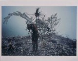 Untitled - 1991-2010, Acrylic and ink on color photograph, 11 x 14 (paper) 9 x 13.5 (image)