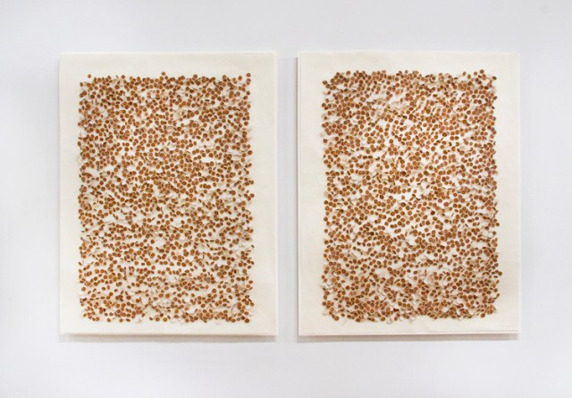 """Sermin Kardestuncer - """"Untitled,"""" Diptych, 2009, Earth from Siena, Italy on muslin on washi with silk thread, 25 x 20 x 1/2 inches each panel (25 x 41.75 inches overall)"""