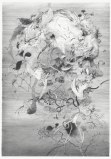 """Darina Karpov - """"Face,"""" 2013, Graphite on paper, 12 x 9 inches. Sold"""