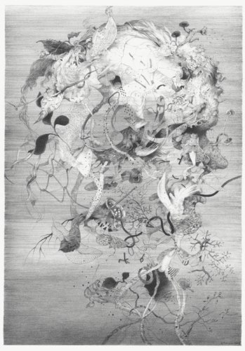 "Darina Karpov - ""Face,"" 2013, Graphite on paper, 12 x 9 inches. Sold"