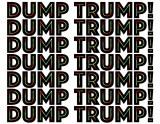 Tricia Keightley - Dump Trump