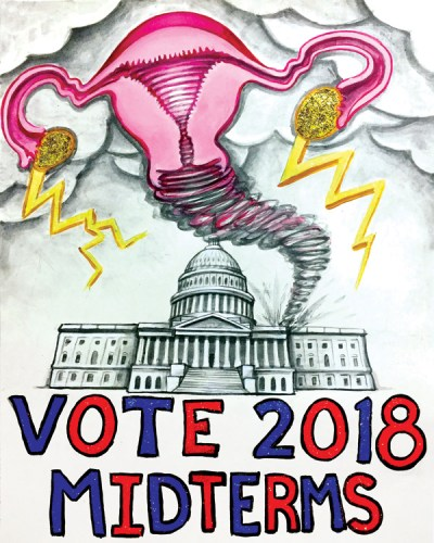 "Laura Murray - ""Vote 2018 Midterms"""