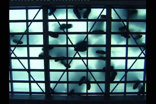 "Maix Mayer - ""Oberfläche 1,"" 2003, DVD, Duration: 3 minutes, Ed. 1/6, 38 x 36 inches. Courtesy of Galerie EIGEN + ART Leipzig / Berlin."