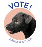 "Michael Ballou - ""Vote! Early & Often"""