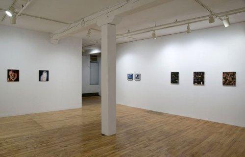 Ryan Mrozowski - Installation view