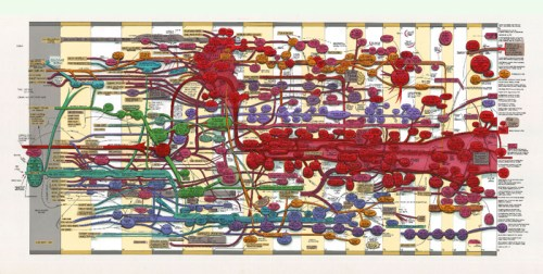 """Ward Shelley - """"Fluxus v. 3,"""" 2012, oil and toner on mylar, 35 x 74 inches"""