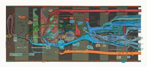 """Ward Shelley - """"Diaspora (People of the Book) v.2,"""" 2012, Oil and toner on mylar, 35.5 x 75 inches"""