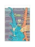 """Ward Shelley - """"TV Arts, v.1,"""" 2012, Acrylic and toner on mylar, 28 x 21 inches"""