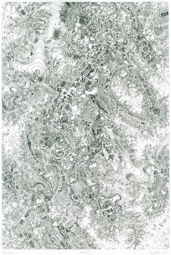Extropy - 2010, Etching on Rives BFK heavyweight, Edition 35, 20.5 x 15 inches, Plate size: 14 x 9.25 inches