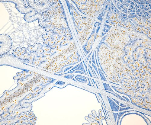 I5, 22, 57 Interchange, with Hydra (Detail) - 2013, Ink and acrylic on paper, 30 x 37 inches