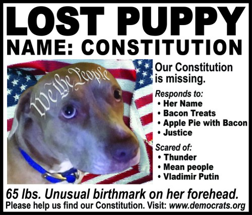 "Doggies of the American Revolution - ""Lost Puppy"""