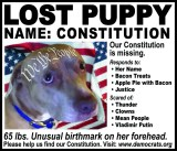 "Doggies of the American Revolution - ""Lost Puppy"""