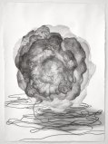 Hose - 2011, Graphite on paper, 29 x 21 1/2 inches