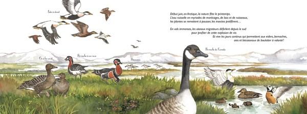 au_pole_nord_ou_au_pole_sud_int1_editions_ricochet
