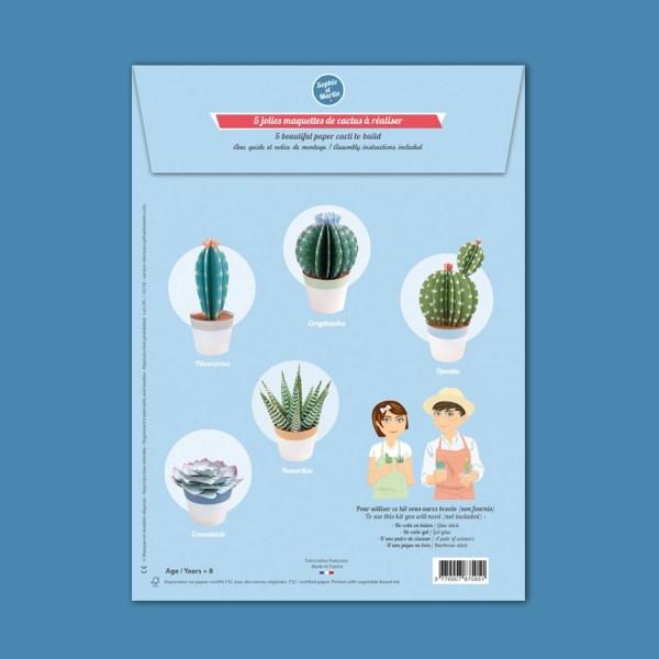 les-petits-cactusK