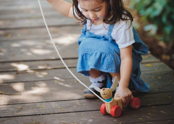 5101_PlanToys_HAPPY_PUPPY_Push_and_Pull_Gross_Motor_Coordination_Imagination_12m_Wooden_toys_Education_toys_Safety_Toys_Non-toxic_7