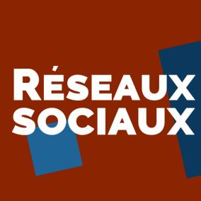Réseaux sociaux : panorama