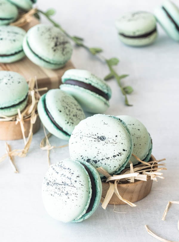 Robin's Eggs Macarons with chocolate ganache filling