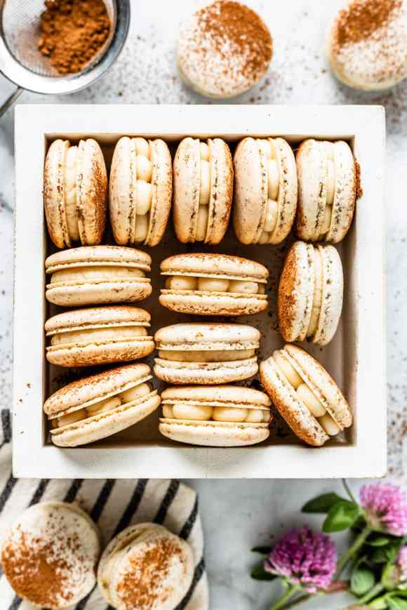 Tiramisu macarons in a box filled with mascarpone frosting, dusted with cocoa powder bird's eye view