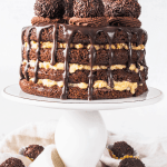 Vegan German Chocolate Cake-2