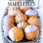 Vegan Blueberry Lemon Madeleines with blueberry glaze