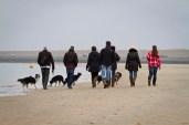 Wandelen aan het strand