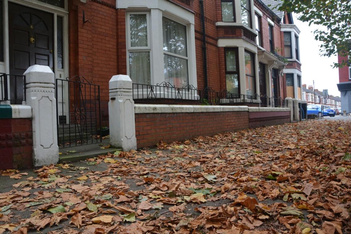 dove andare a novembre liverpool foliage autunno