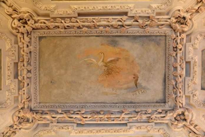 gabinetto degli uccelli sala