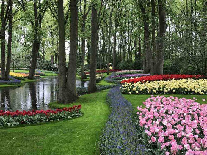 keukenhof giardino floreale