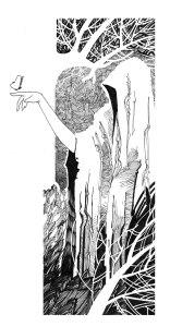 Donna-foresta