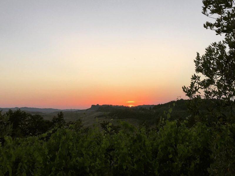 e un'altra giornata è finita #sunset #vineyards #pievedepitti #terricciola #landsofpisa