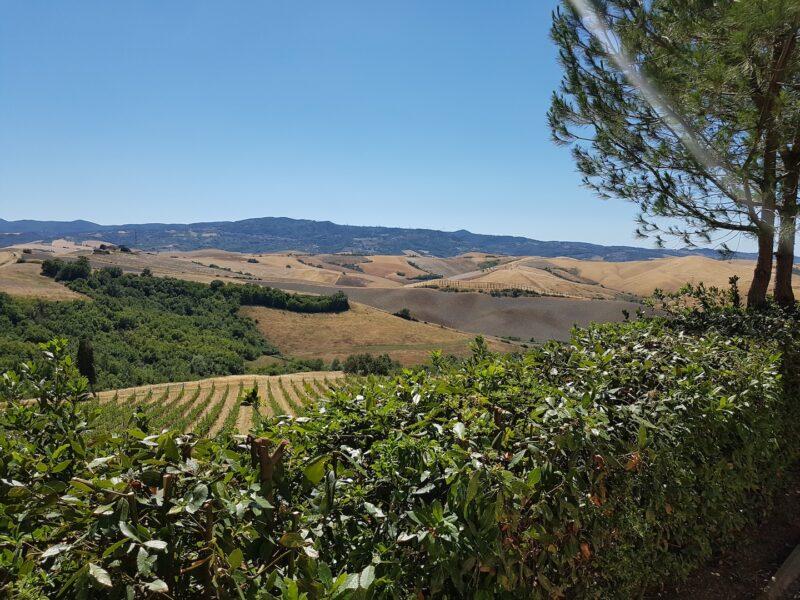 winetour_pievedepitti48