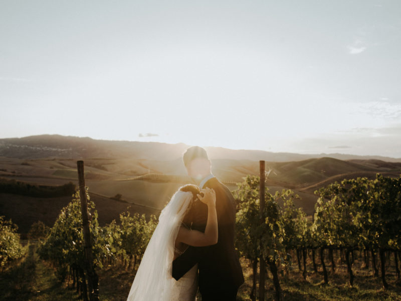 pievedepitti_wedding_vineyard52