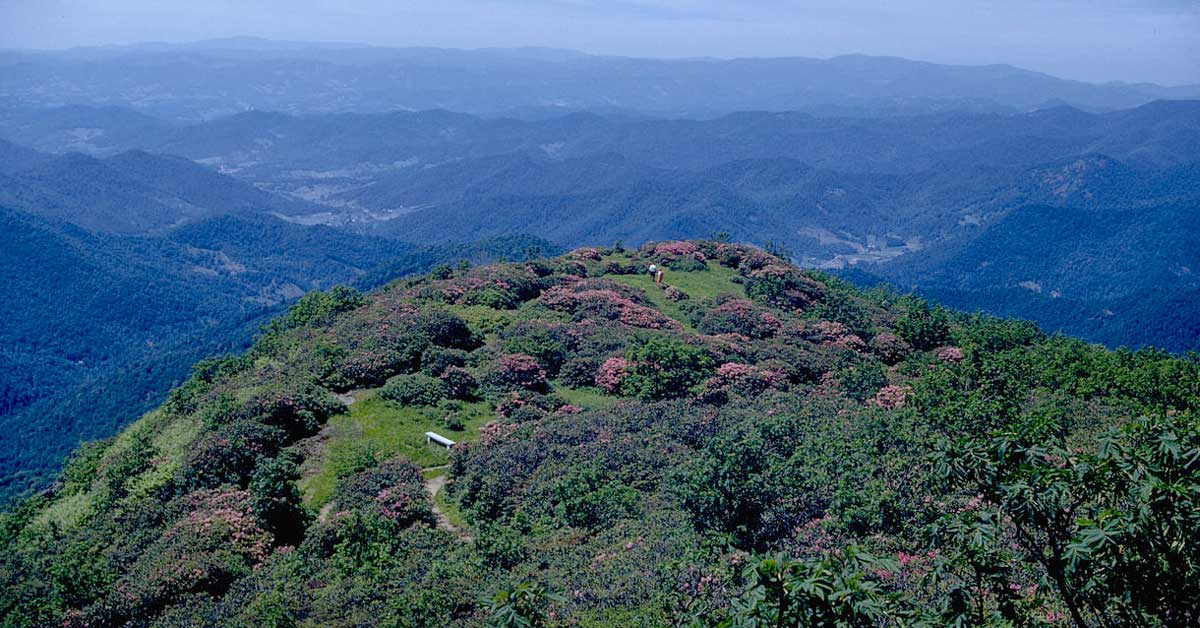 Blue Ridge Parkway  Activities Things To Do  Top